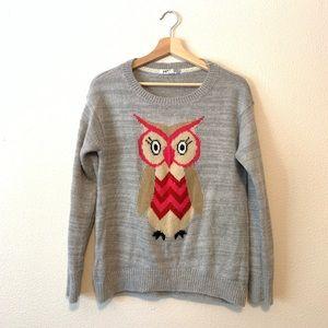 Grey Owl Sweater
